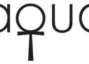 aqua呈獻一公斤白松露拍賣活動和特色美饌 慶祝萬眾期待的松露盛產季節