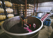"""""""2018年度澳大利亚葡萄酒管理局中国区大型路演""""即将启航"""