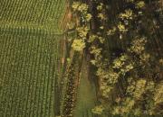 在澳大利亚,开启一场令人惊叹的葡萄酒之旅