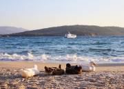 季节性开业的土耳其博德鲁姆丽世度假村全新大图新鲜出炉