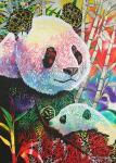 panda-love-by-graeme-stevenson-australia-room-4318.jpg