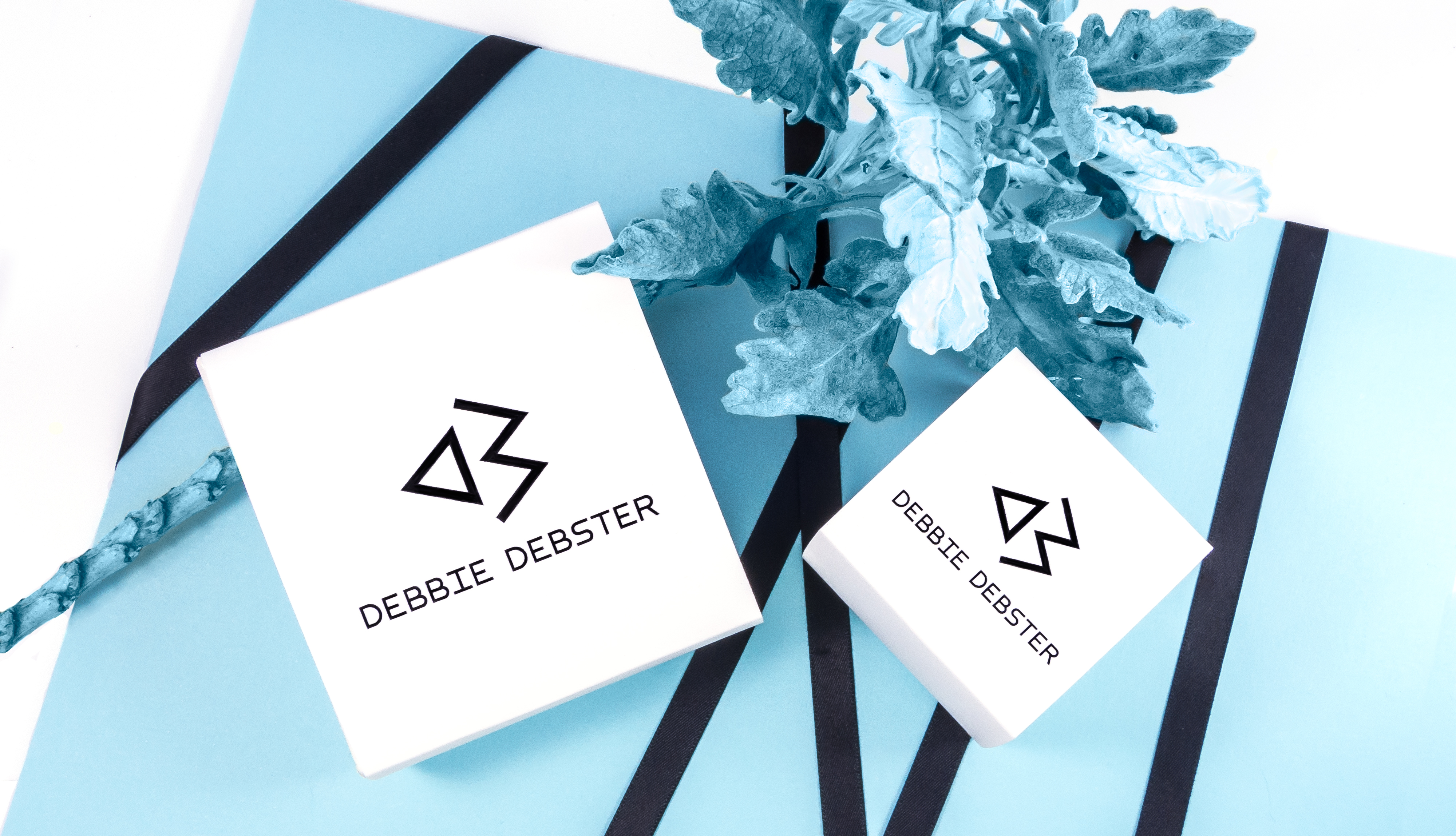 debbie debster packaging