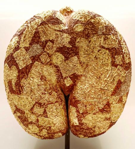 seed-of-life-marie-laure-viebel-fa-e5-9c-8b-fang-e9-96-93-4326.jpg
