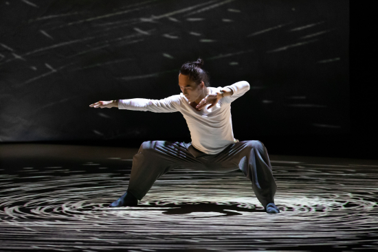 stage-photo_convergence_03-e6-94-9dying-photo_-henry-wong.jpg